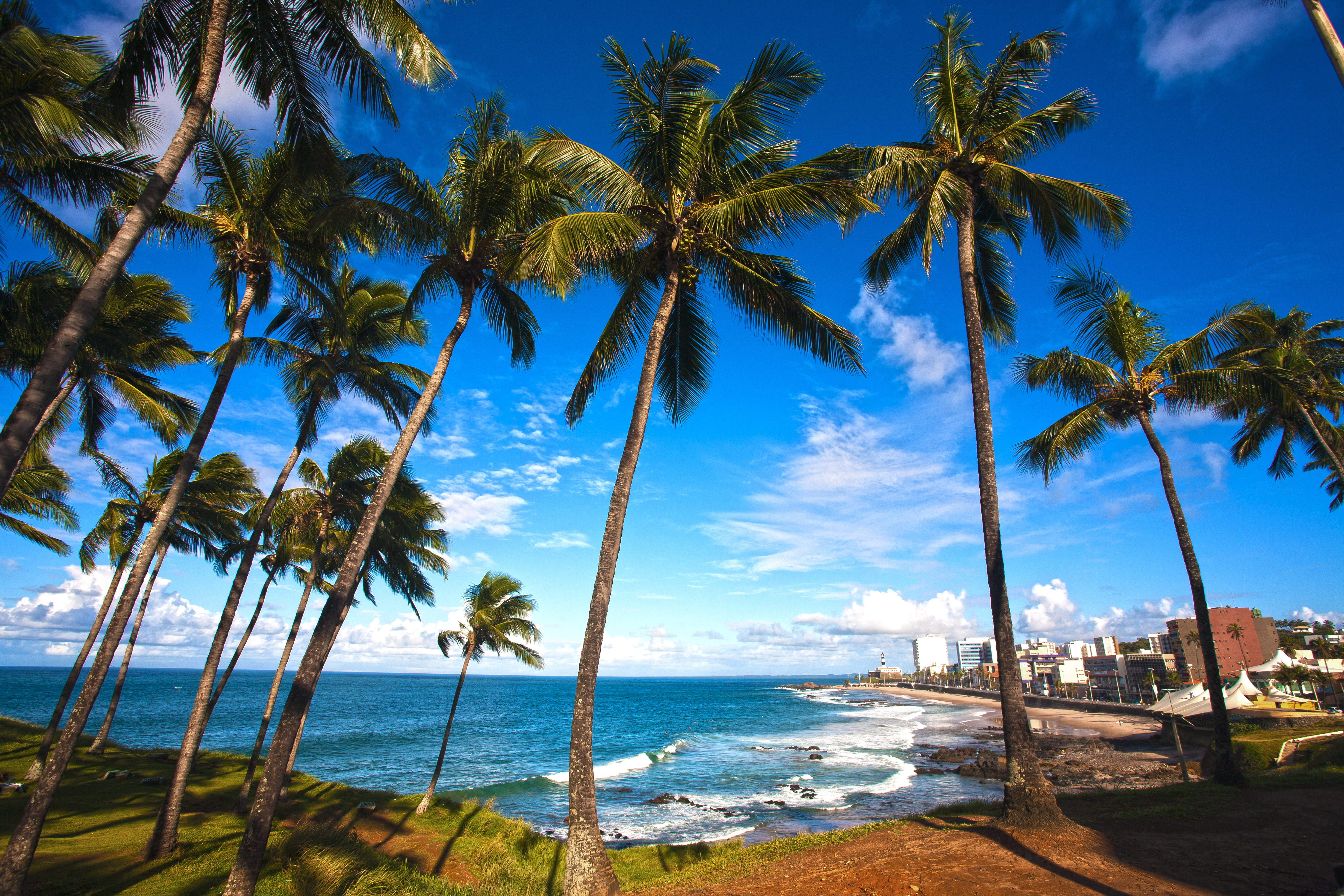 Barra Beach Salvador