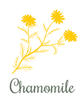 Chamomile.png