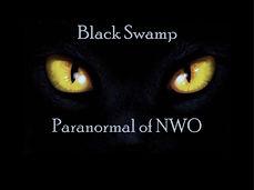 Black Swamp.jpg