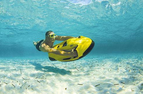 Sea Bob.jpg