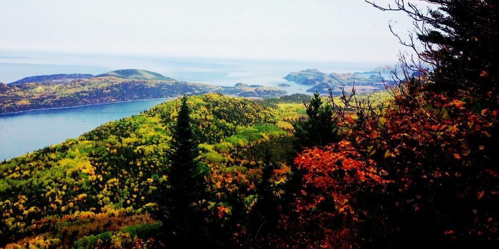Automne Pic Champlain_edited_edited.jpg