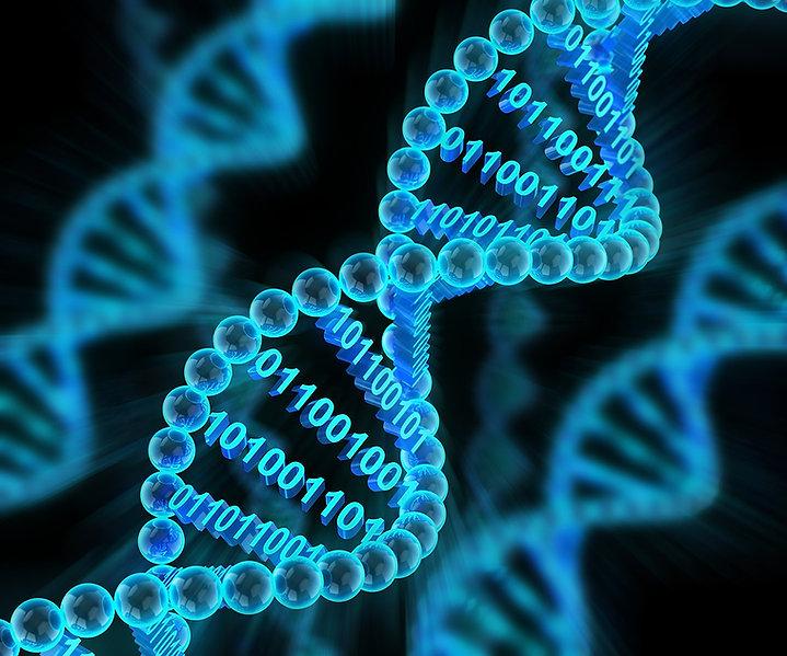 dna-binary-code-255618778-Shutterstock_y