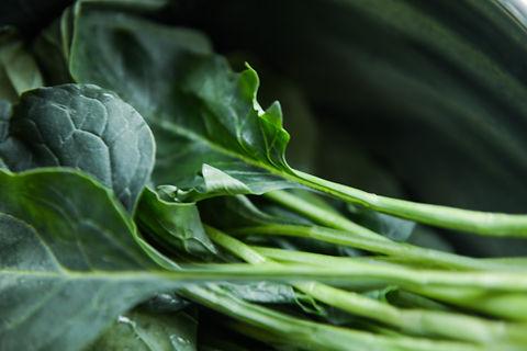close-up-collard-greens-color-750952.jpg