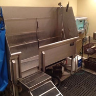 tub with ramp.jpg