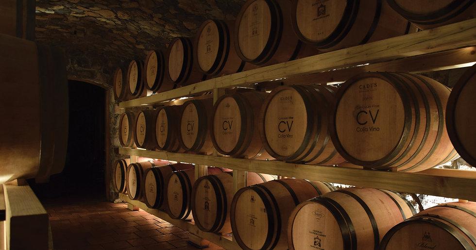 Wine cellar Vinska klet