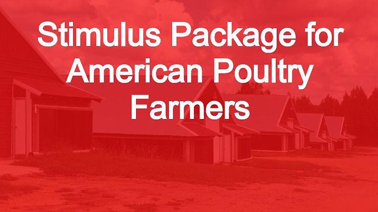 PoultryFarmStimulus.jpg