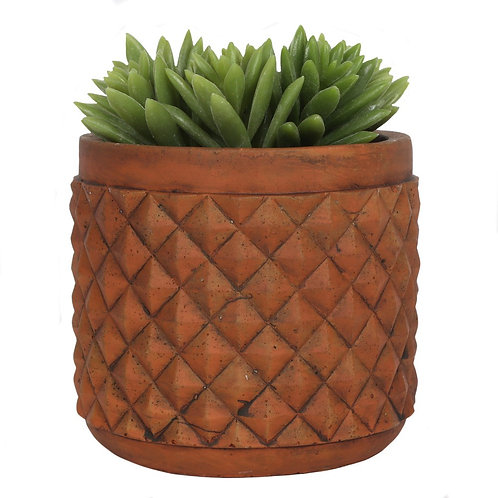Rustic terracotta plant pot