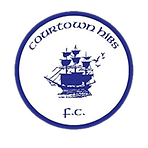 courtownHibs.png