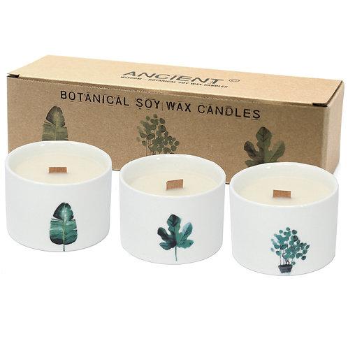 3x Large Botanical Candles - Victorian Peony