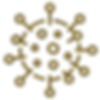 iconfinder_wuhan-coronavirus-virus-outbr