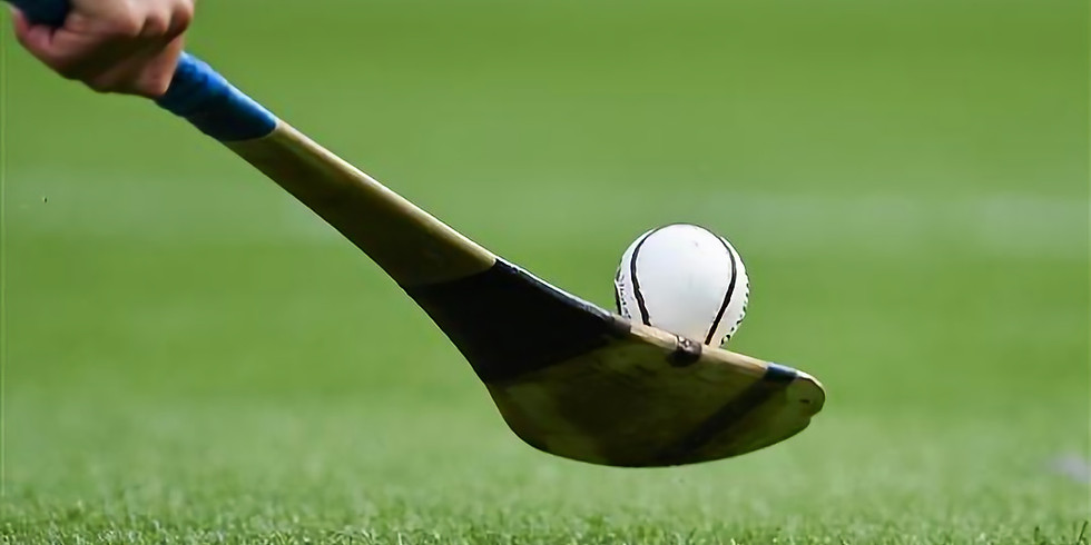 Hurling Workshop with Eoin & Gary Molloy