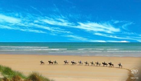 Horses on Curracloe Strand