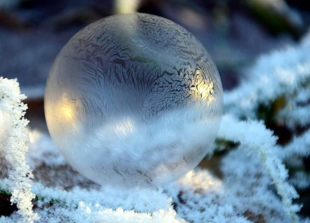Image d'une bulle givrée dans une forêt