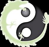C'est le logo du site Juracupuncture. C'est le symbole Yin-Yang entouré d'un dragon vert