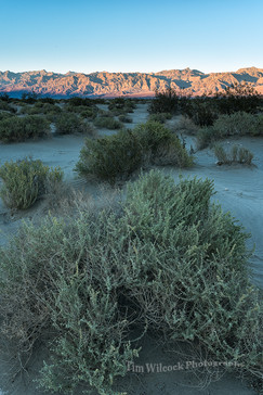 Stovepipe Wells Sunset