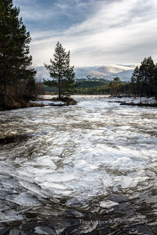 Loch Morlich Ice Flow