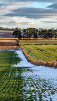 Kinross Farming Land