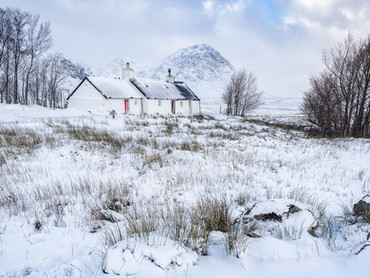 Blackrock Cottage white-out #1