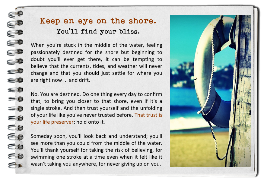 Keep an eye on the shore. How to find your bliss. Fall in love with today.