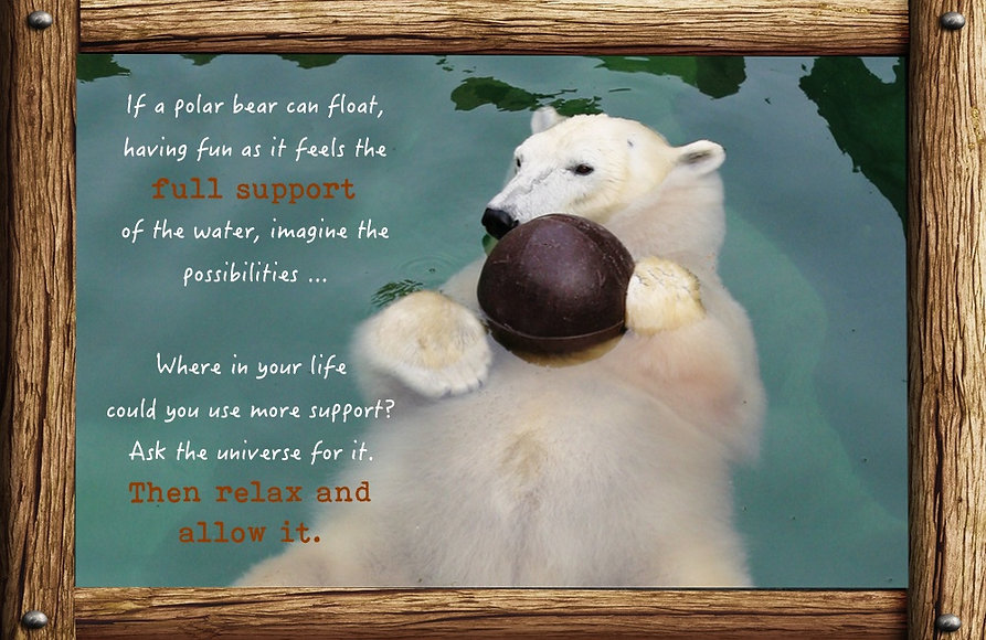 Nature_speak_polar-bear.jpg