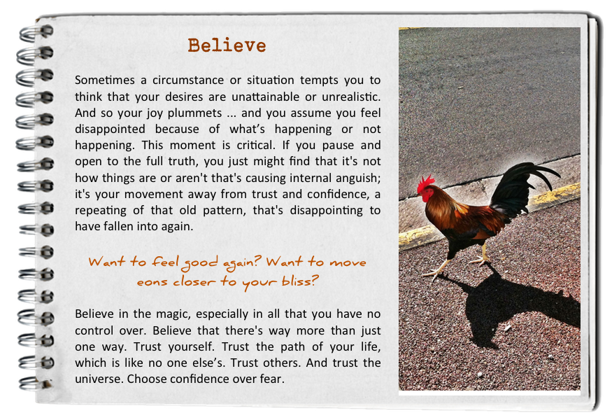Believe. How to find your bliss. Fall in love with today.
