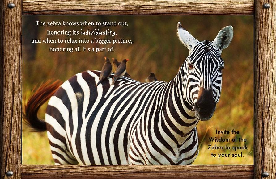 Nature_speak_zebra.jpg