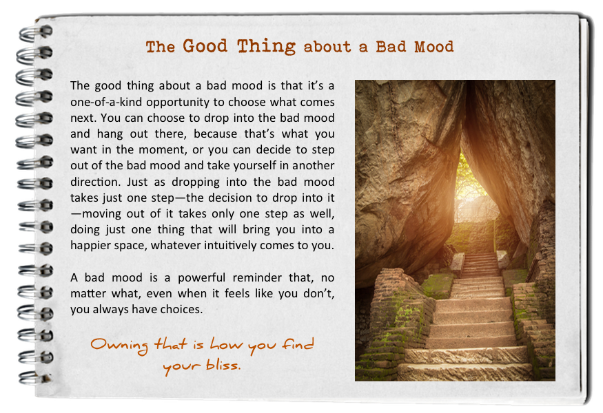 Own this. The good thing about a bad mood. How to find your bliss. Fall in love with today.