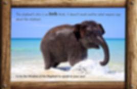 Nature_speak_elephant.jpg