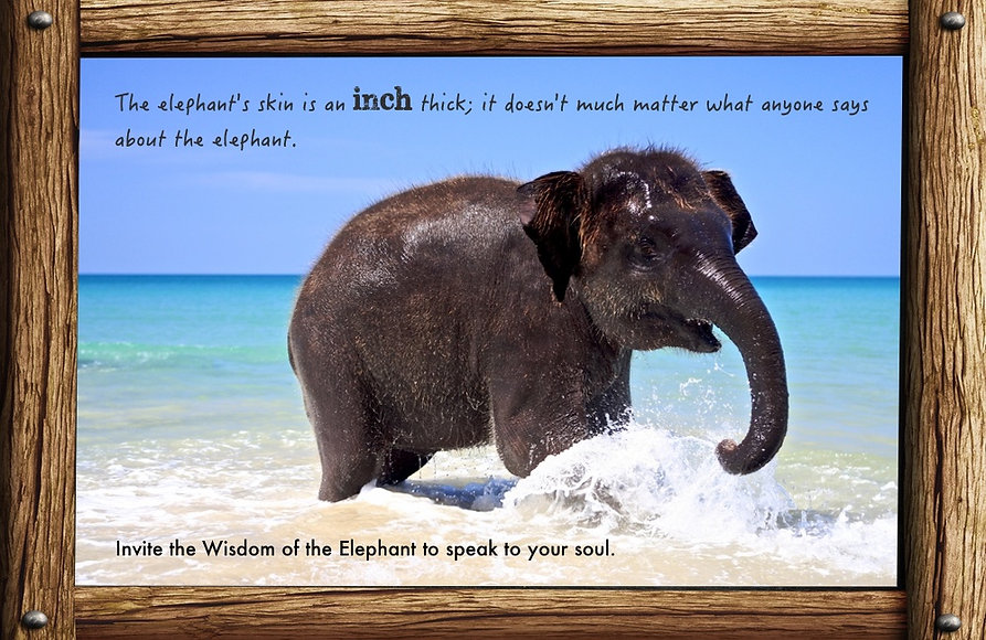 Nature_speak_elephant.jpg