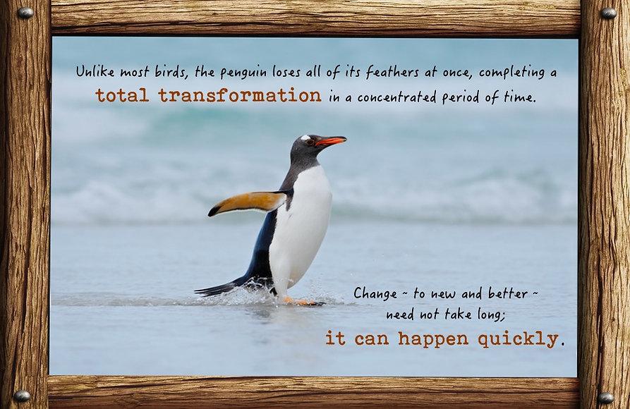 Nature_speak_penguin.jpg
