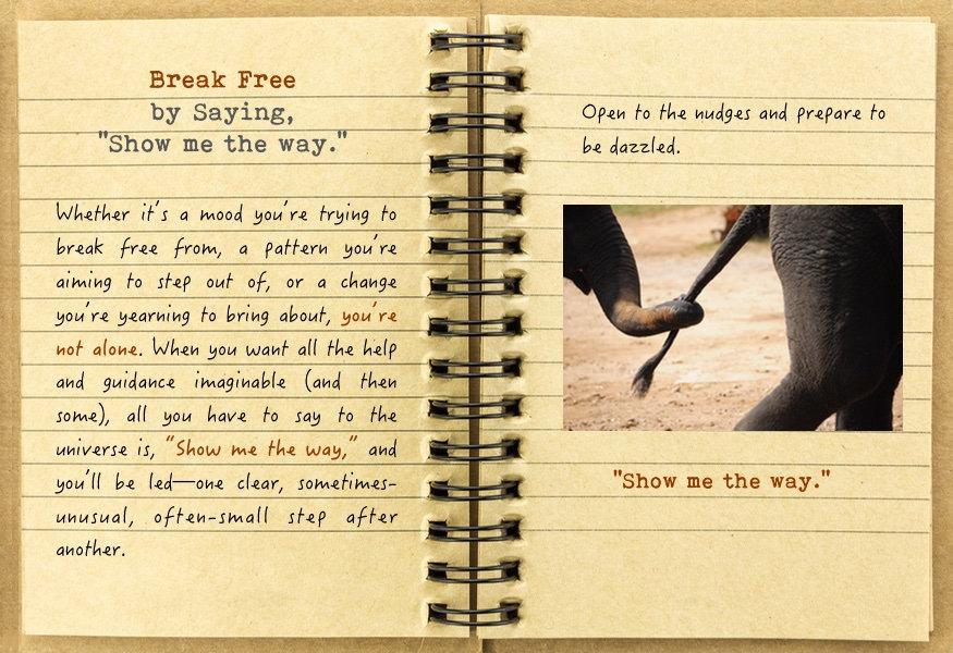 break free_46.jpg