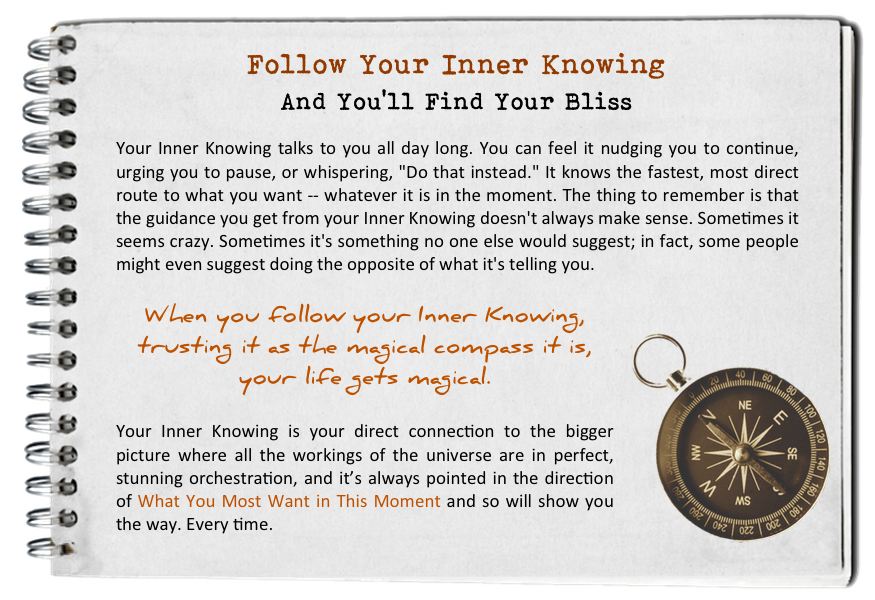 Follow your inner knowing. How to find your bliss. Fall in love with today.