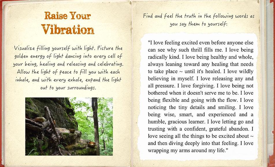 empowerment_diary_raise-your-vibration.j