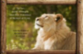 Nature_speak_lion.jpg