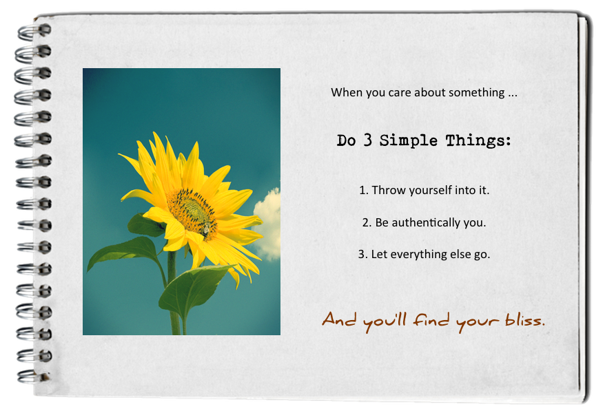 find_your_bliss_do_3_things.png