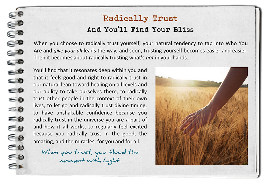 find_your_bliss_radically_trust.png