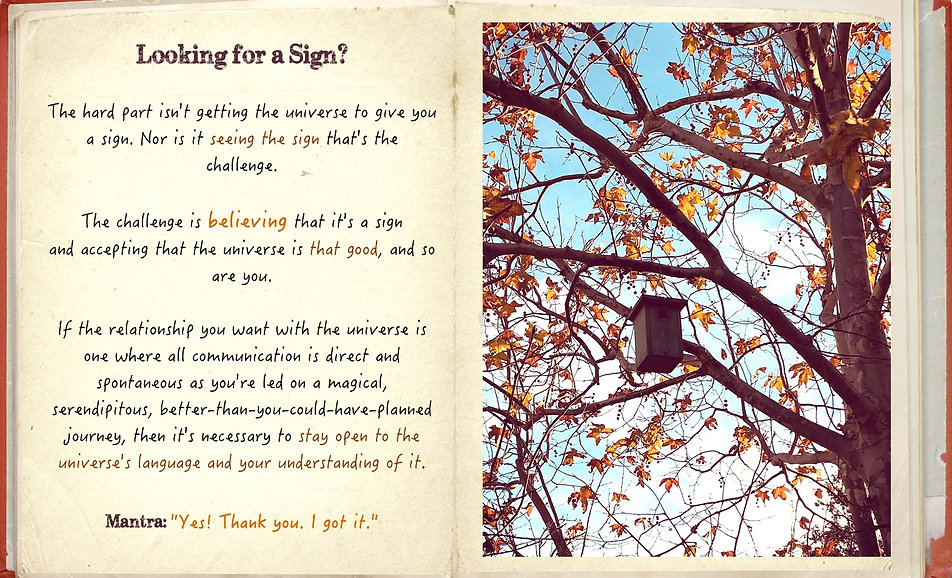 empowerment_diary_want-a-sign?