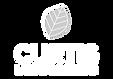 lg-white-leaf-top-nobg.png