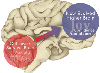 New Hope for PTSD: How Neuroscience is Energizing the Brain to Produce Surprising Results