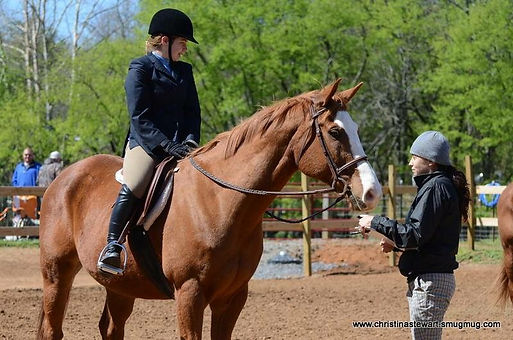 horseback riding, riding lessons, horse boarding, Chattanooga horse boarding, Chattanooga, equestrian, hunter/jumper, eventing, dressage, horse care, stable, farm, horse training, training, natural horsemanship, biomechanics, rider biomechanics