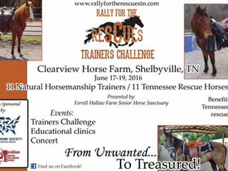 Rally for the Rescues Challenge