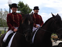 Not only training, but a special performance at the Kentucky Horse Park from Head Rider from the SA Lipizzaners, and Official ISRB Coach Anneke Roodt. 2013 Kentucky Symposium