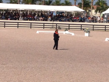 PRESENTING AT OFFICIAL FEI EVENTS...Wellington, Florida