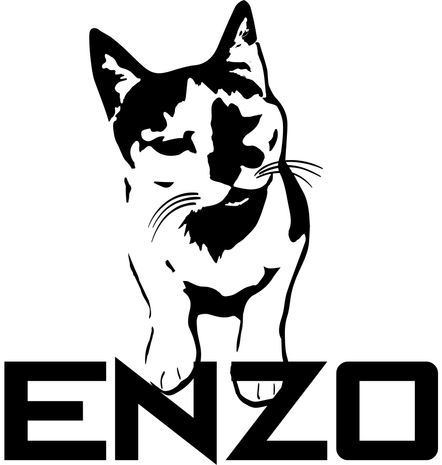 enzo.png