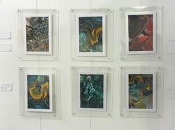 Set of six framed photographs.