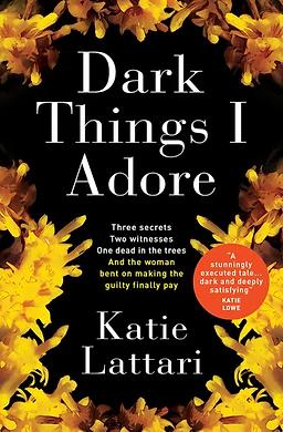 DarkThingsIAdore UK cover.webp