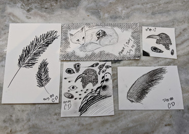 Coral's sketches (DARK THINGS I ADORE).