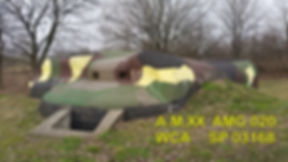 amg020.jpg