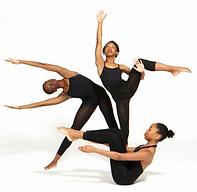 Modern Dancer #3 (Group Shot).png