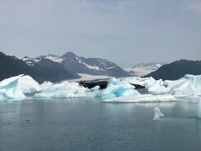 Day 28: We hit an Iceberg